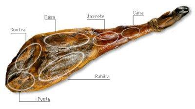 Partes del jamón